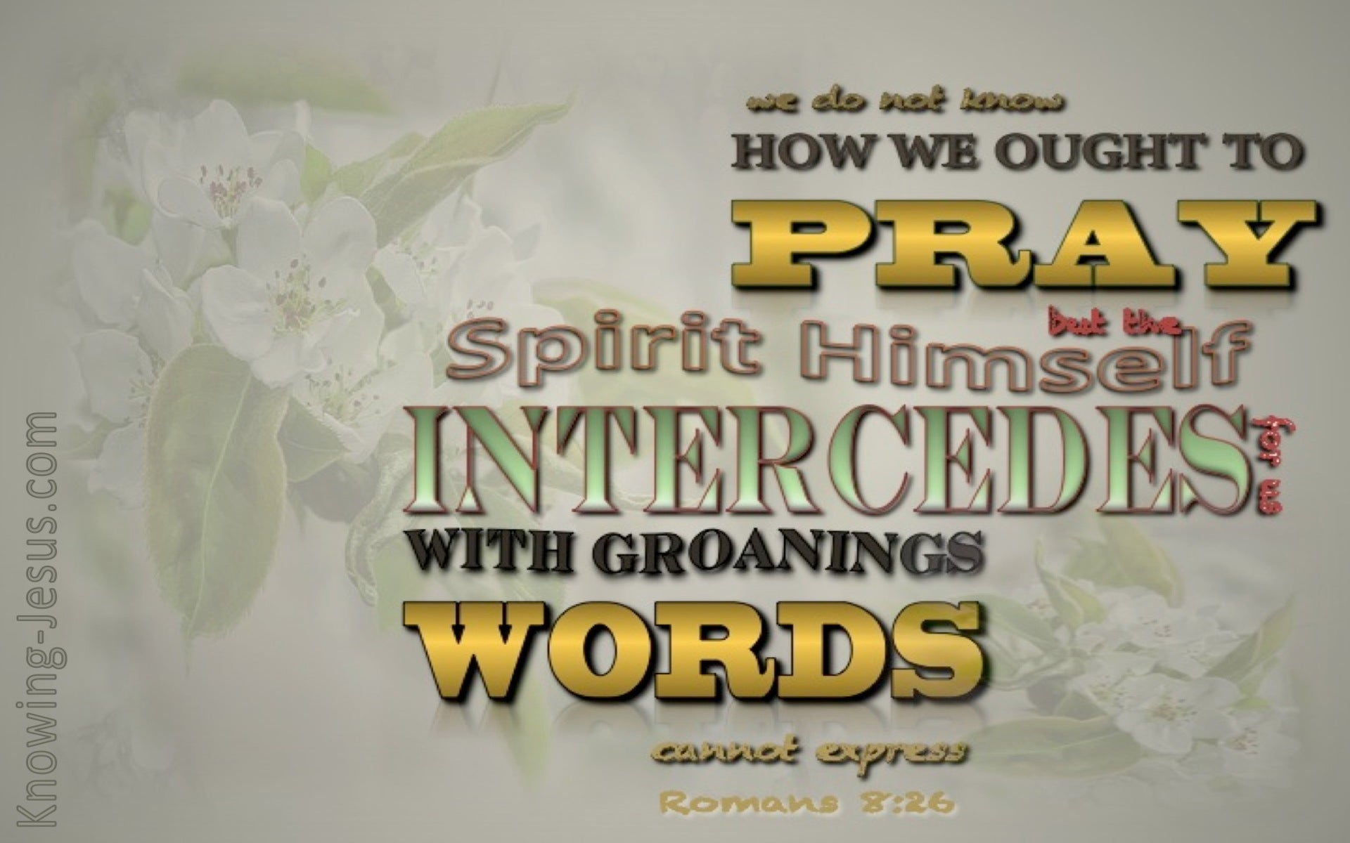 Romans 8:26 The Spirit Intercedes (gold)